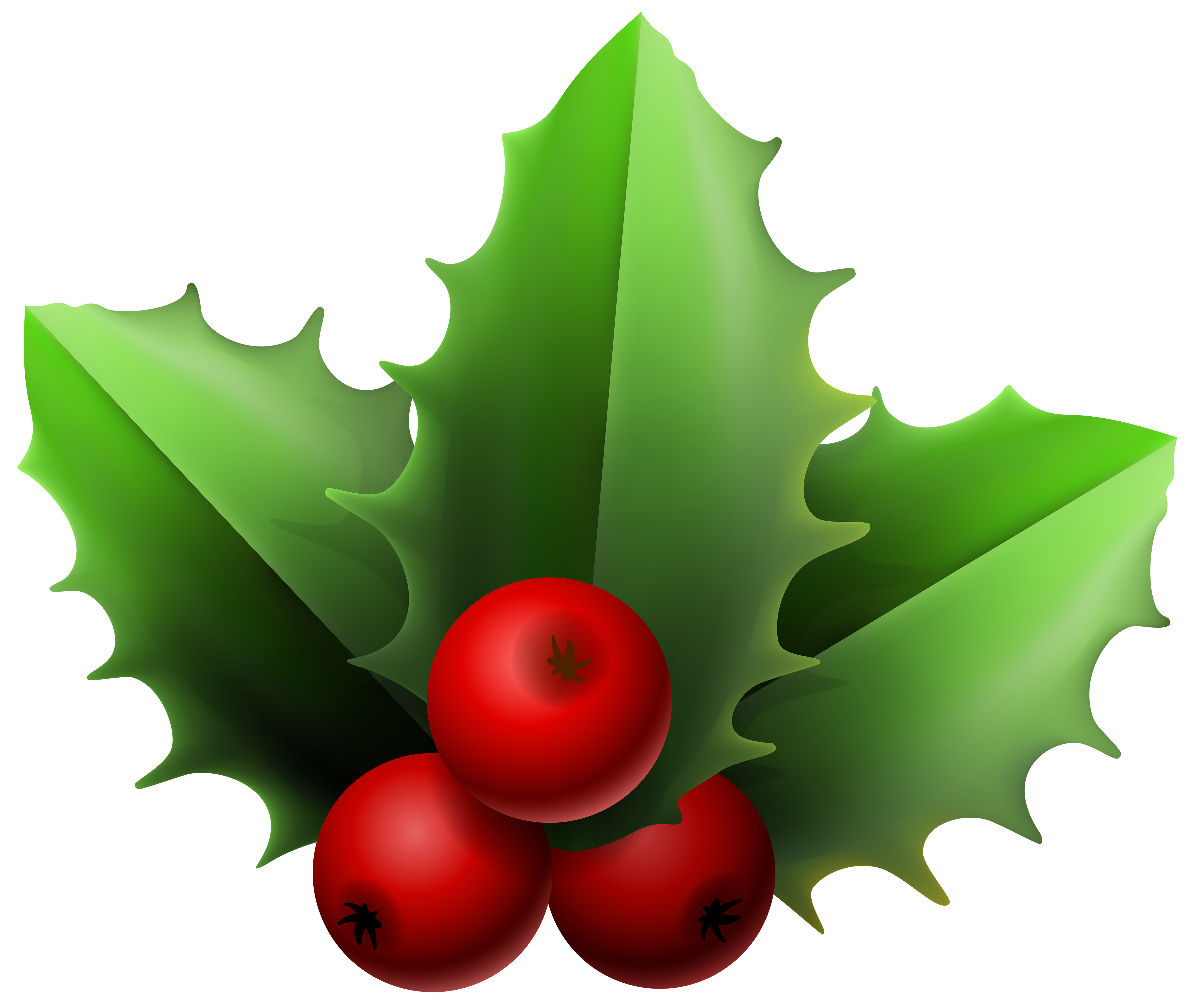 Christmas png image gallery. Mistletoe clipart