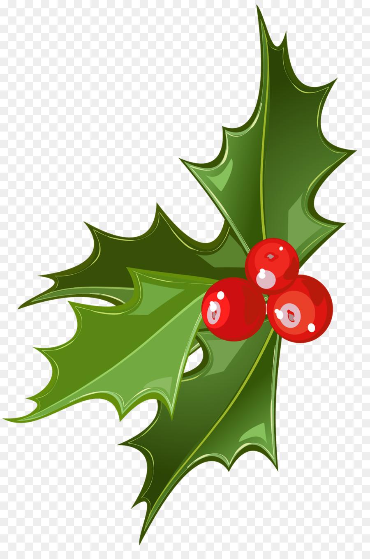 Mistletoe clipart clip art. Christmas leaf plant fruit