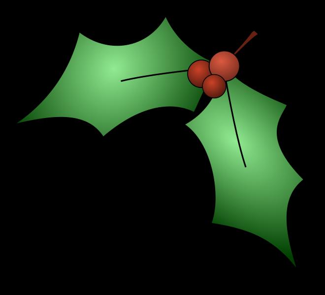 Mistletoe mistletoe leaves
