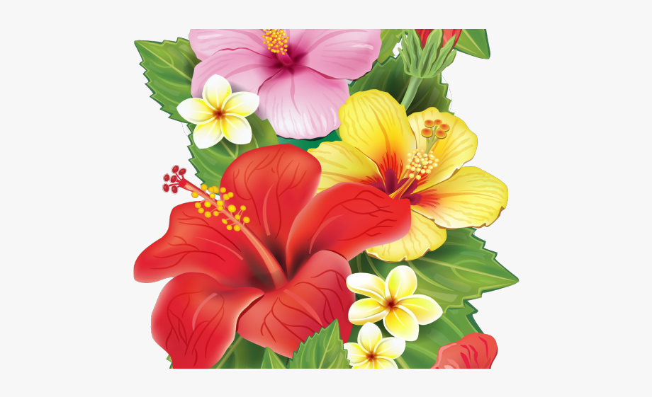 Red transparent background tropical. Moana clipart exotic flower