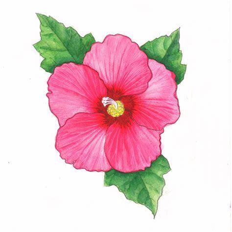 Pin by aysuda on. Moana clipart korean flower