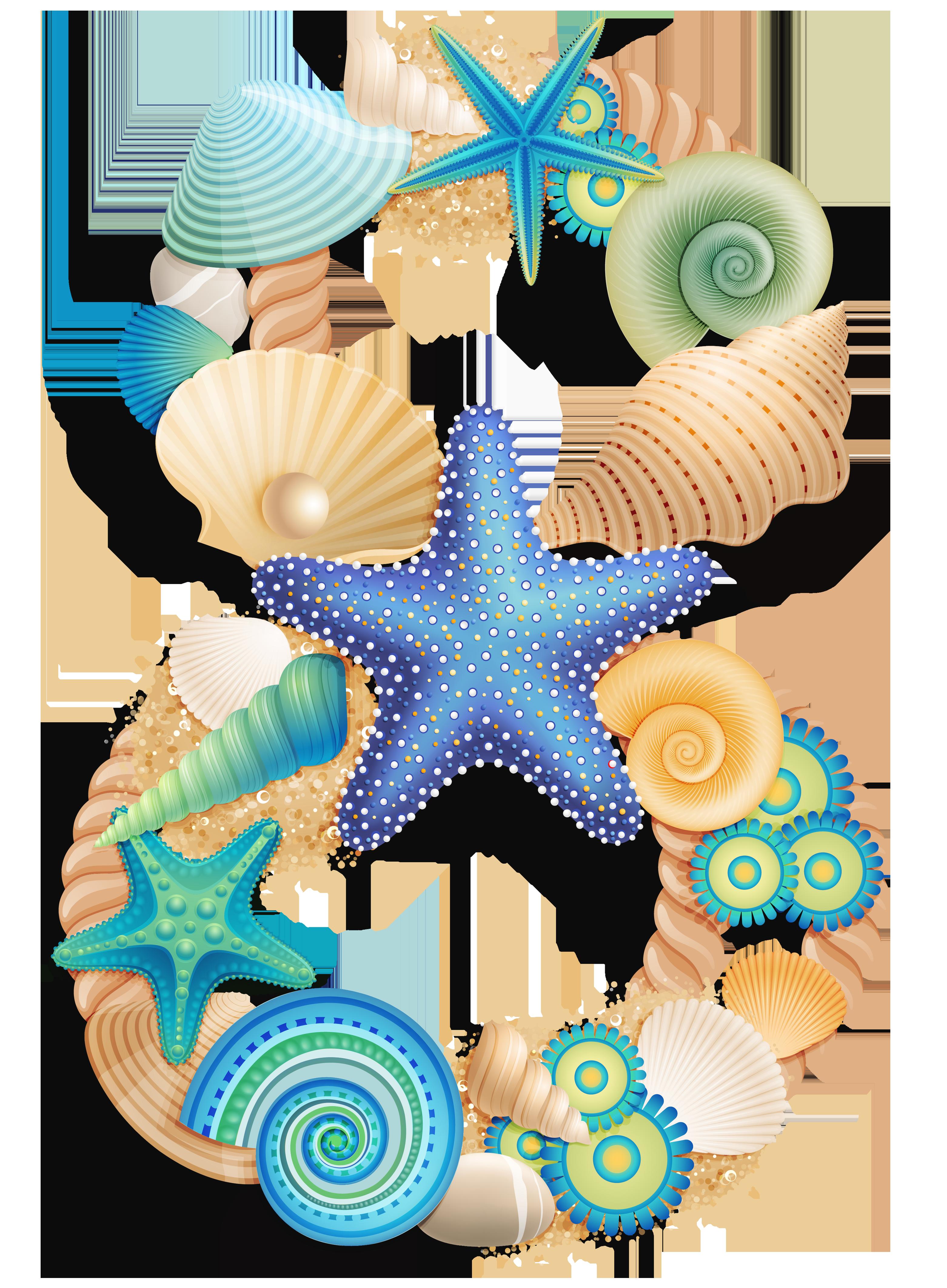 Moana clipart shell. Pin by on pinterest