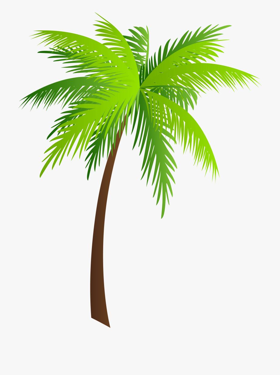 Moana clipart tree. Palm clip art free