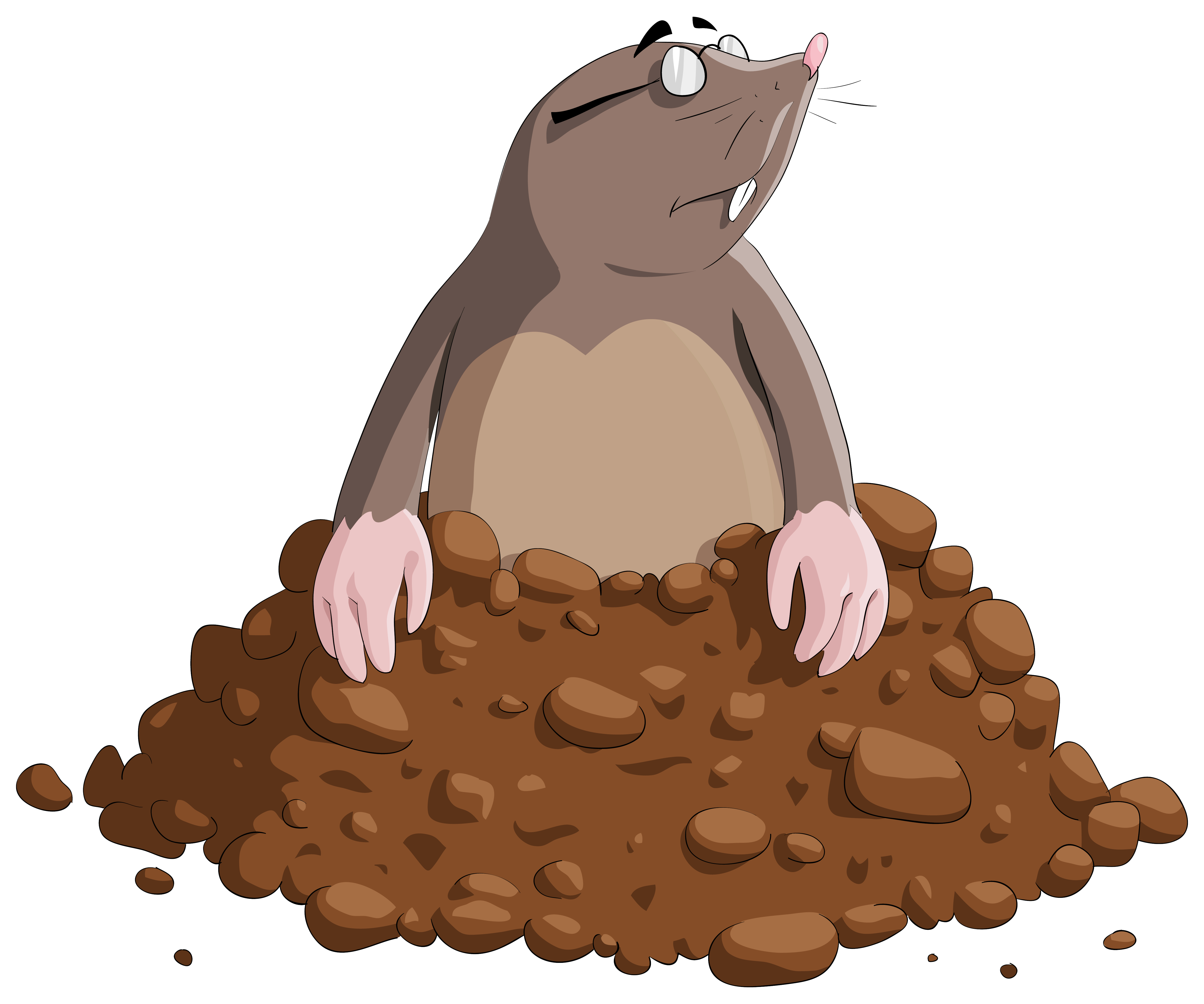 Mole clipart. Cartoon png image gallery