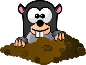Mole clipart mole hole. Coming out of his