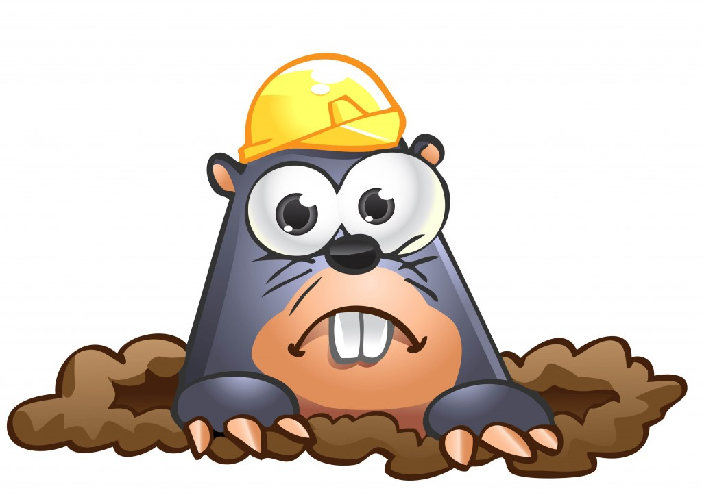 Mole clipart mole hole. Collection of free download
