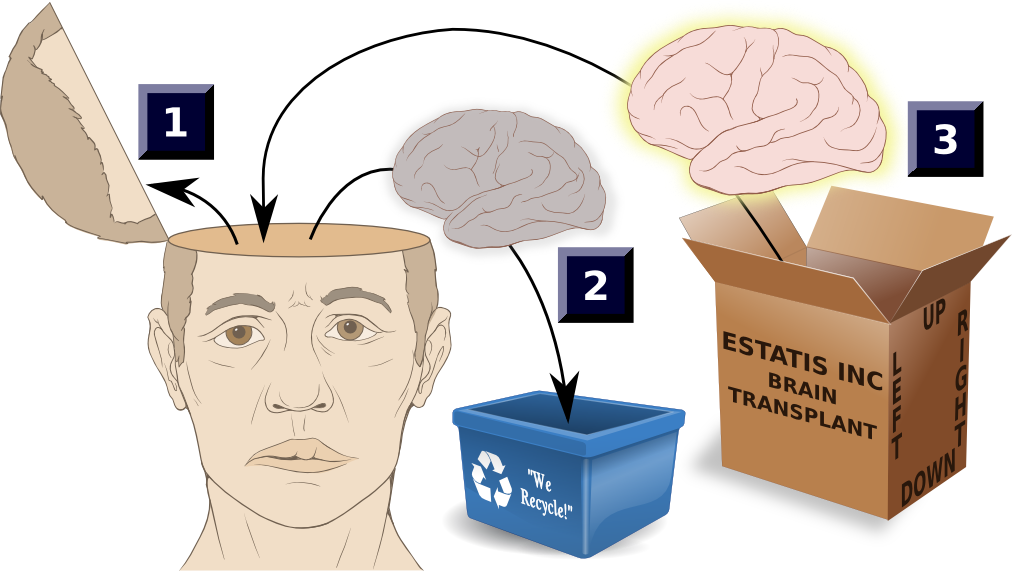Transplant by estatis inc. Money clipart brain