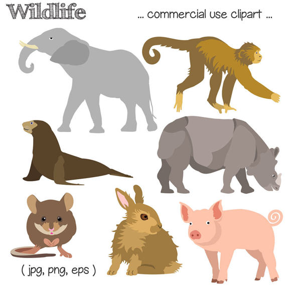 Monkey clipart elephant. Wildlife animal rabbit