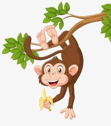 Monkeys clipart tree. Monkey hanging in a