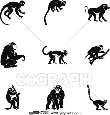 Vector species of monkey. Monkeys clipart basic