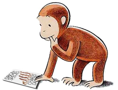 Free cliparts download clip. Monkeys clipart curiosity