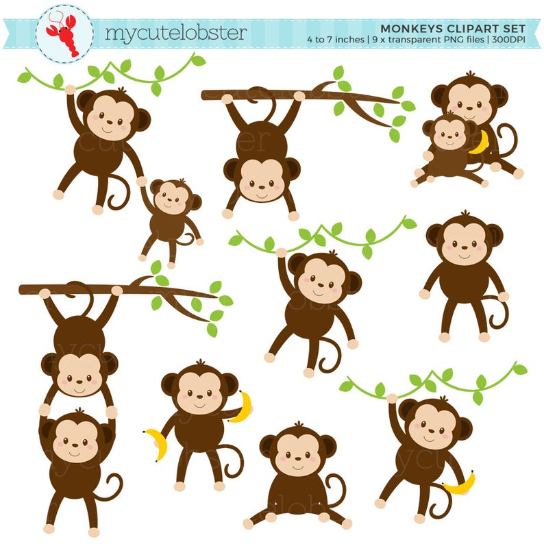 Set clip art of. Monkeys clipart