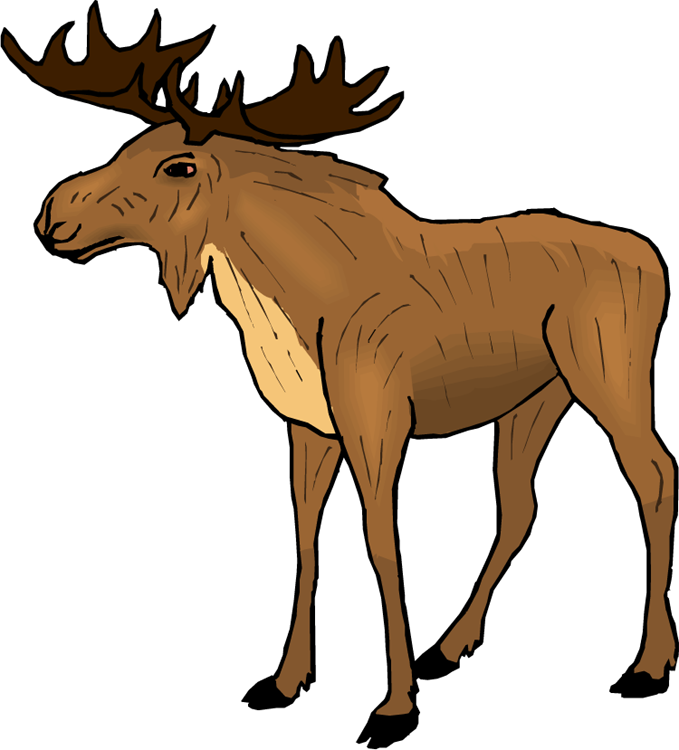 Moose clipart.