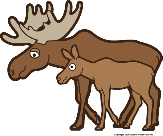 Moose clipart. Free click to save
