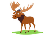 Moose clipart. Search results for clip