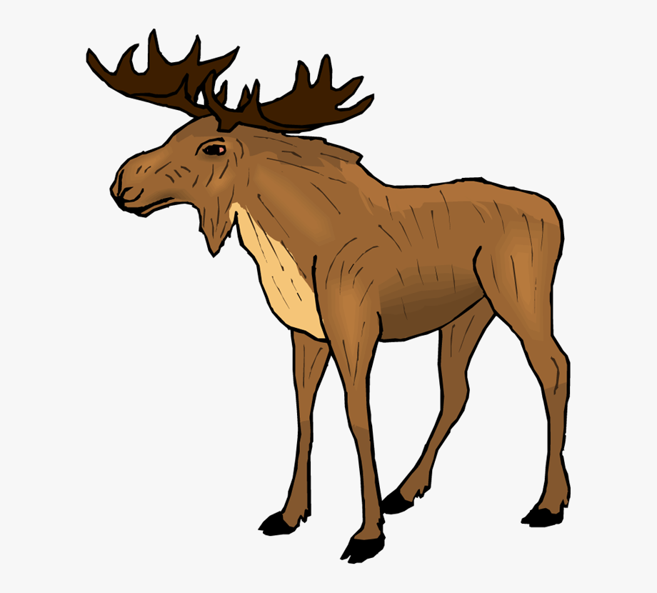 Moose clipart comic. Cartoon free images cliparts
