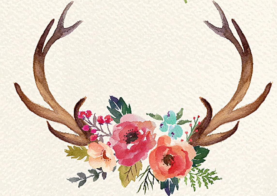 Moose clipart deer. Antler flower clip art
