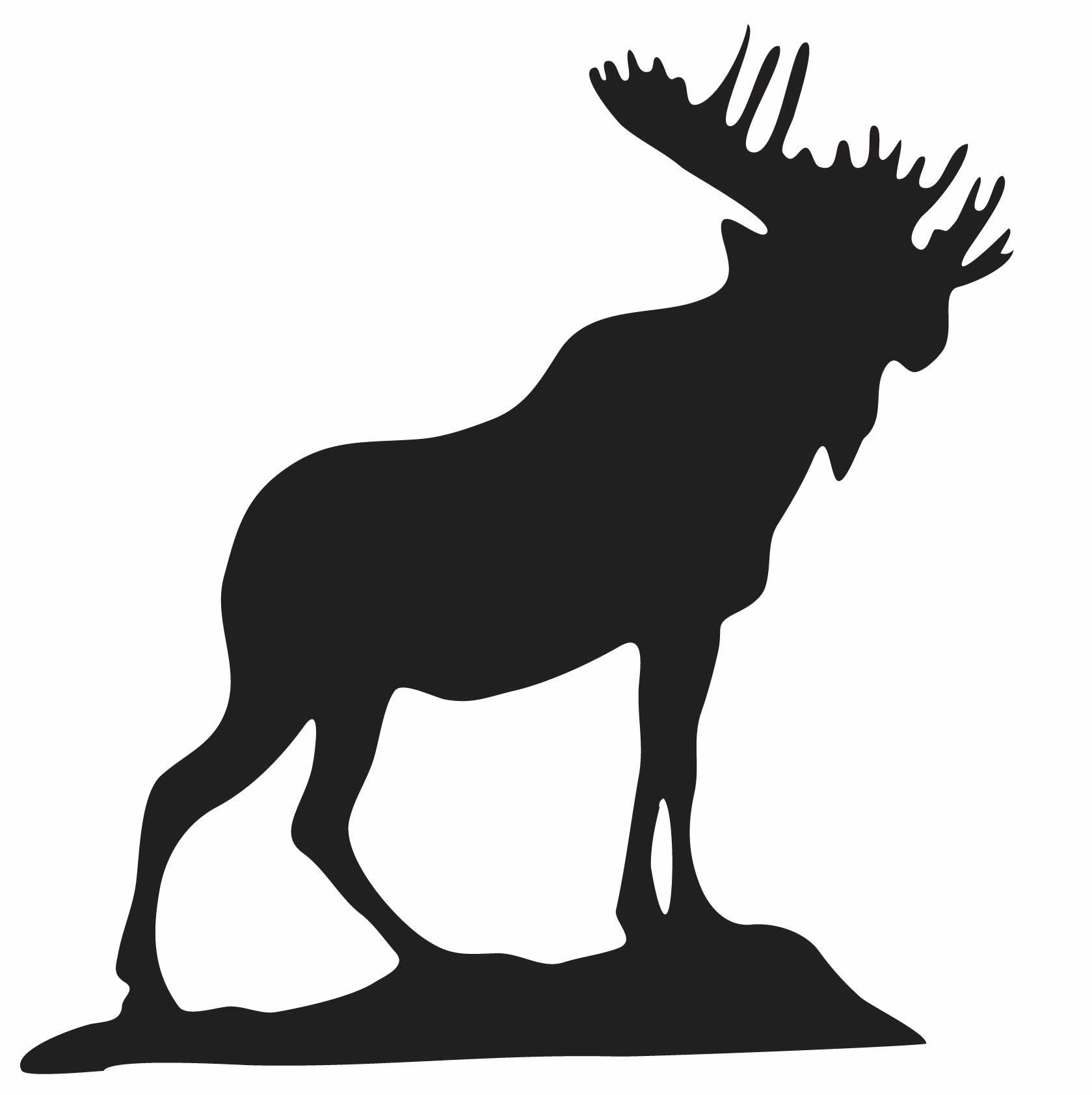 Moose clipart female moose. Photos graphics international