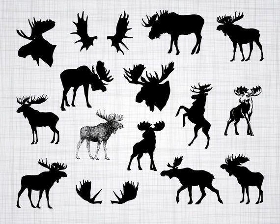 Svg bundle cut files. Moose clipart file