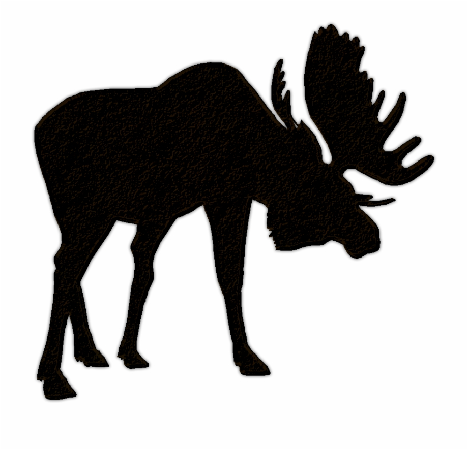 Moose clipart moose family. Silhouette transparent