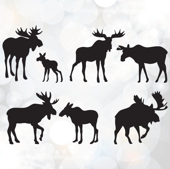 Image result for crafts. Moose clipart moose family