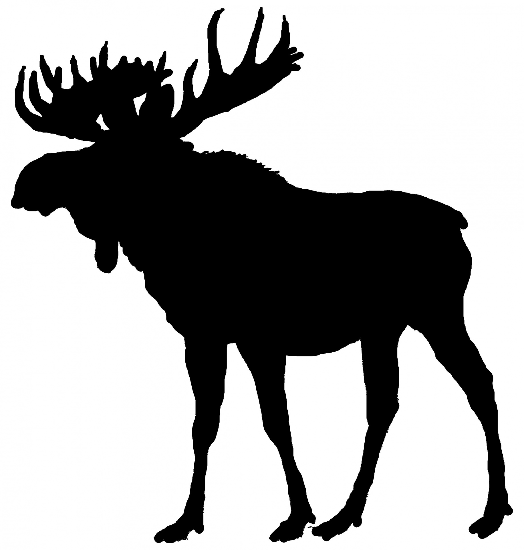 Maine new england wildlife. Moose clipart moose outline