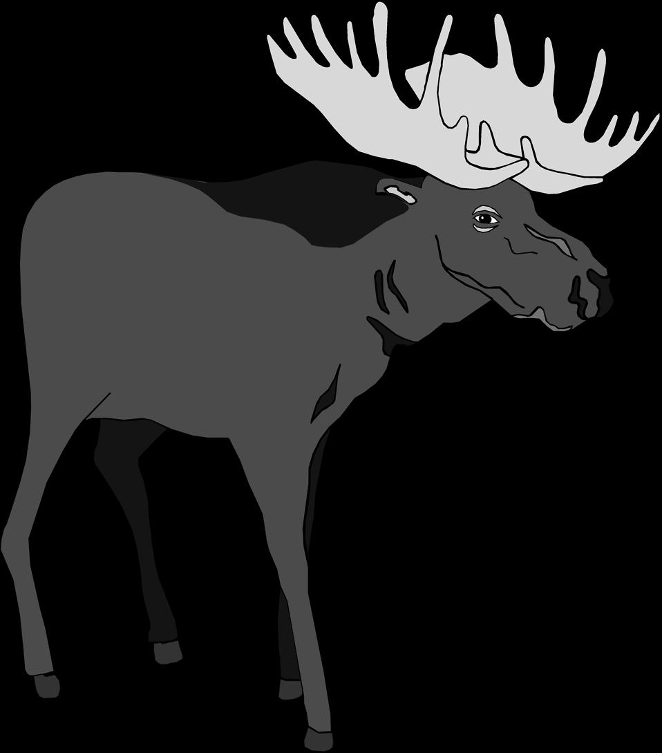 Moose clipart moose outline. Clipartblack com animal free