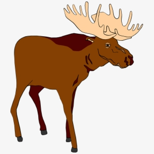 Moose clipart realistic cartoon. Detailed vector transparent free