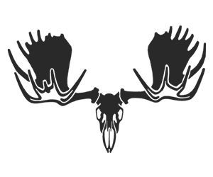 Moose clipart skull. Drawing google search survivor