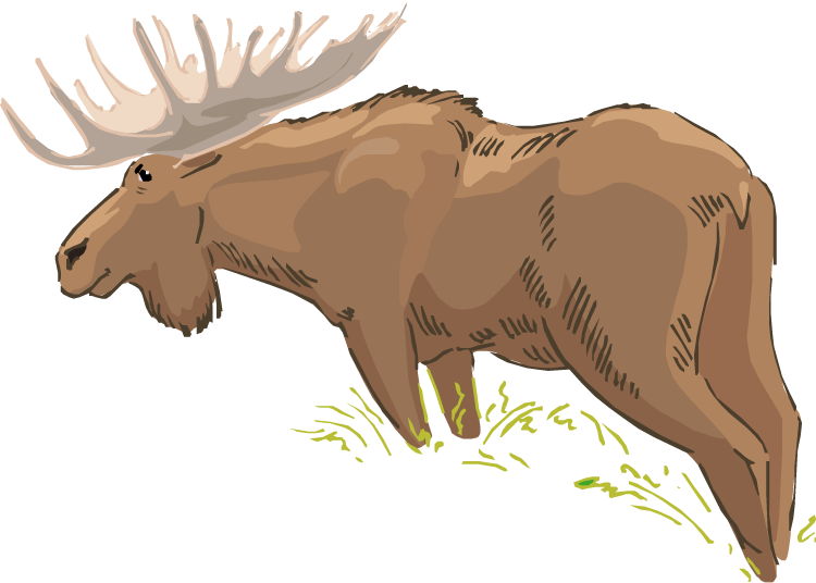 Moose clipart symbol canada. Free group