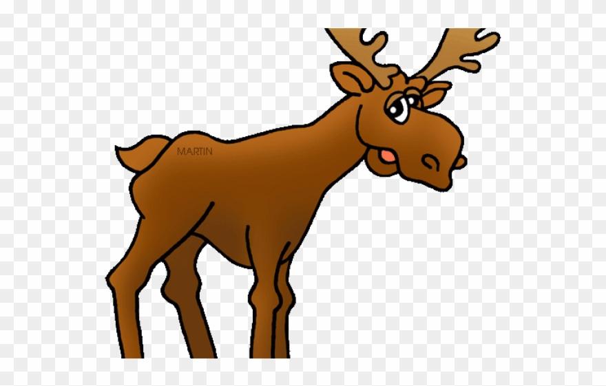 Cartoon png . Moose clipart woodland bear