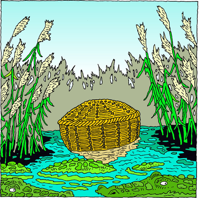 Image she took for. Moses clipart bulrush clipart