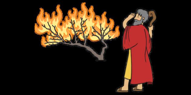 And bush illustration twinkl. Moses clipart burning tree