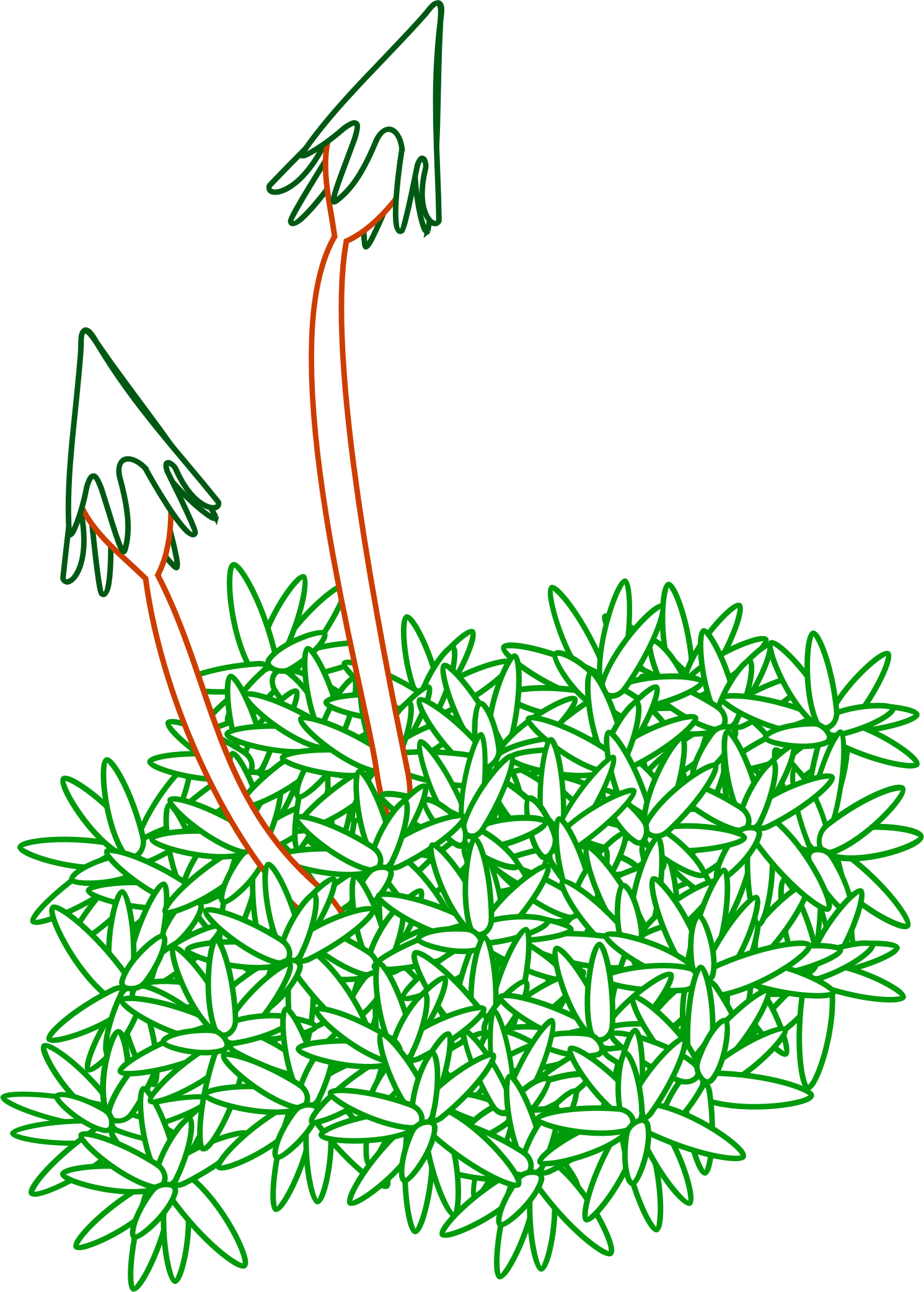 Moses clipart moss. Free on dumielauxepices net