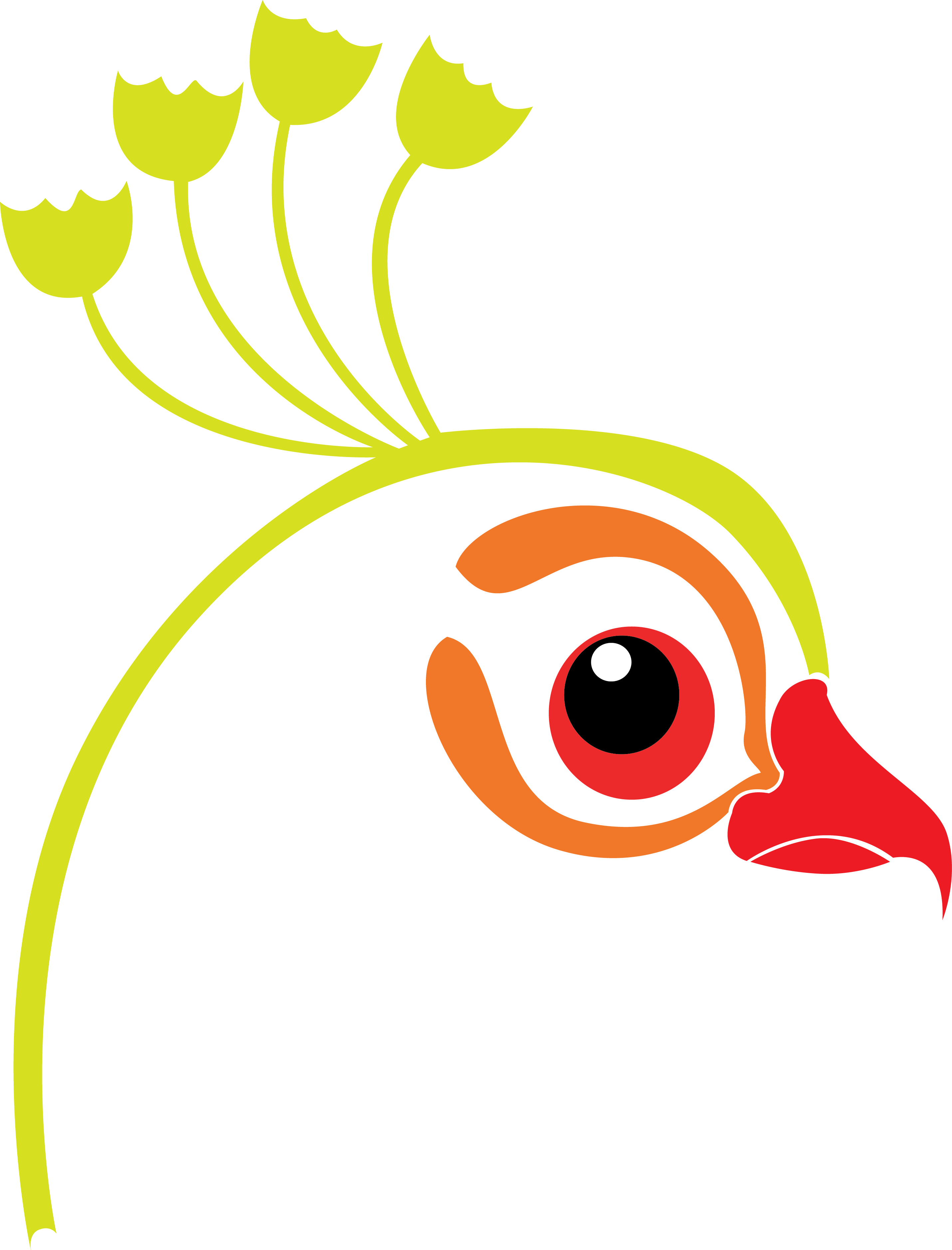 peacock clipart abstract