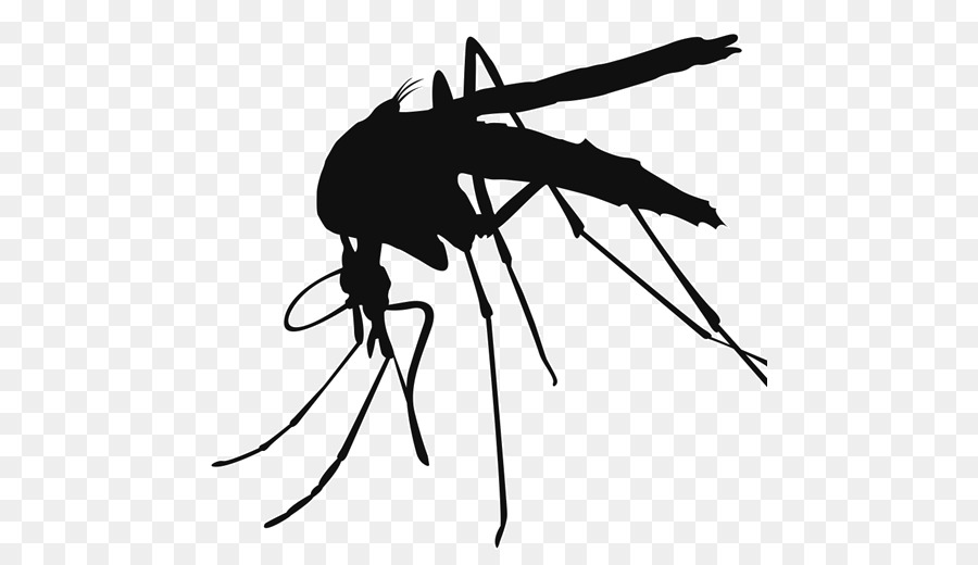 Mosquito clipart. Control clip art png