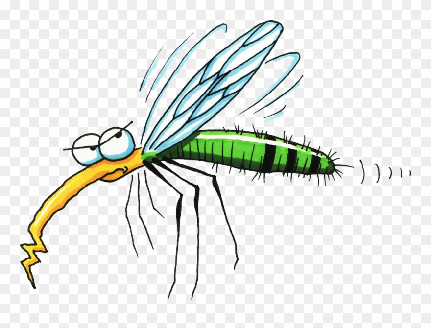 Mosquito clipart angry. Pioneer natural insect spray