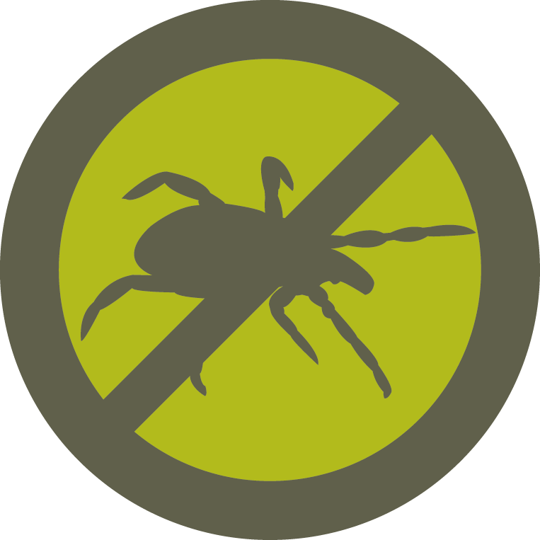 Ticks bugs disease squad. Mosquito clipart annoying fly