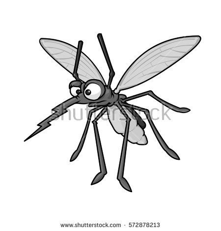 Wild angry on white. Mosquito clipart annoying fly