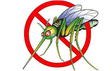 Mosquito clipart dengue mosquito. Gm mosquitoes magic or