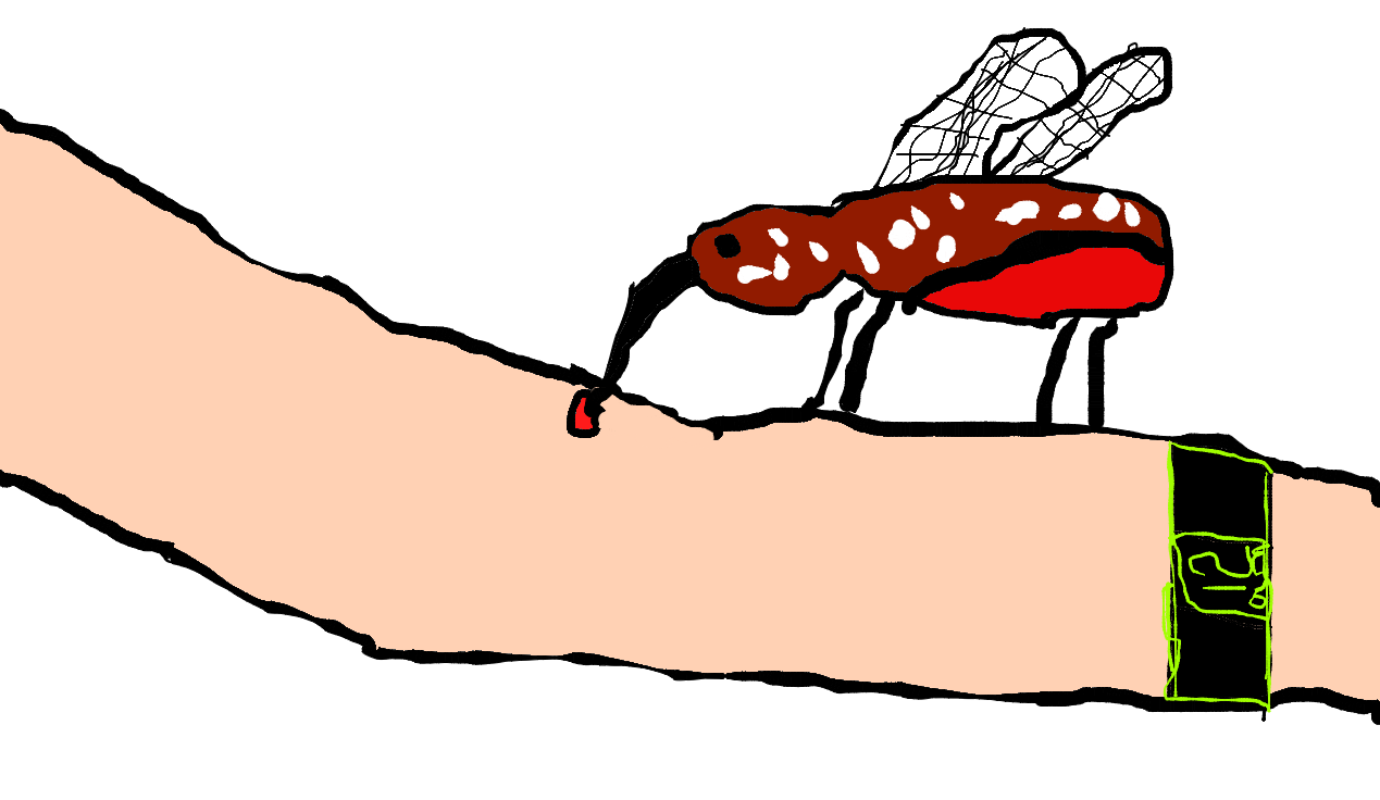 Mosquitoes on emaze only. Mosquito clipart female mosquito