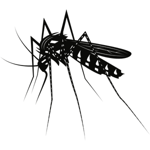 Cliparts of free download. Mosquito clipart file