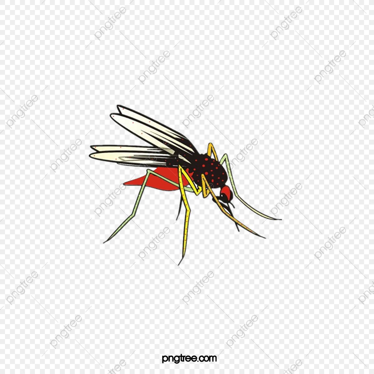 Cartoon png transparent . Mosquito clipart file