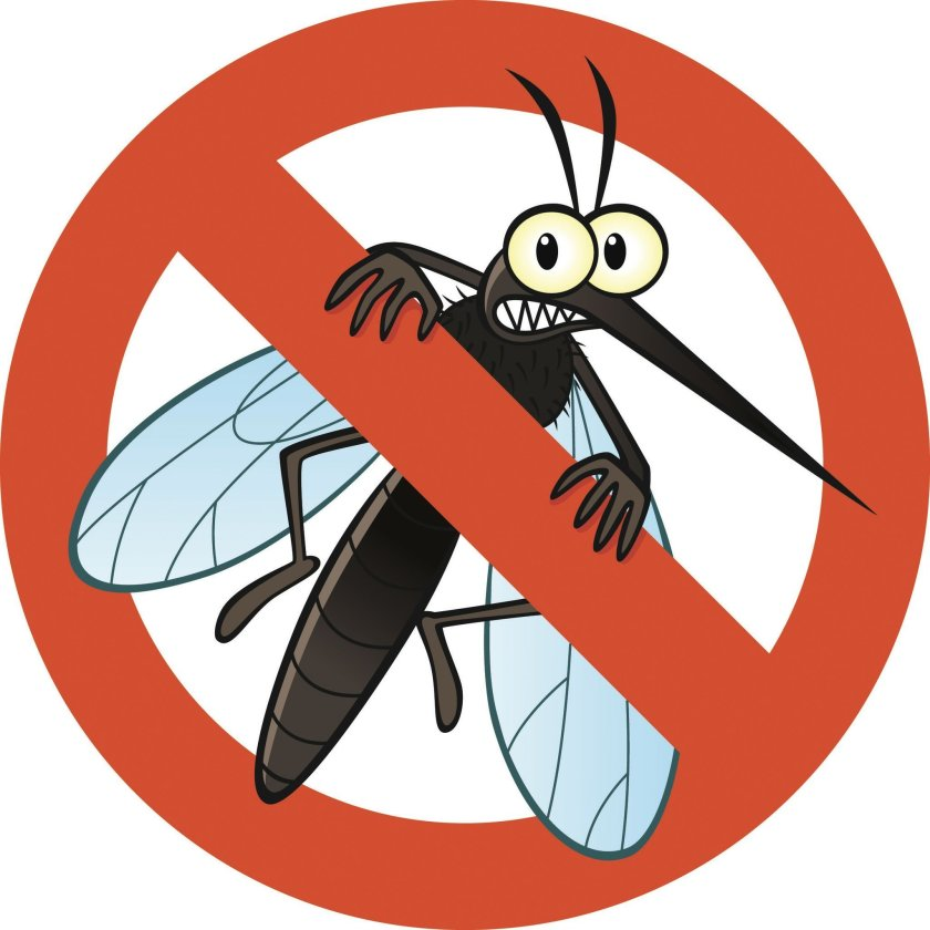 Mosquito clipart hurt. Mosquitoes can spread serious