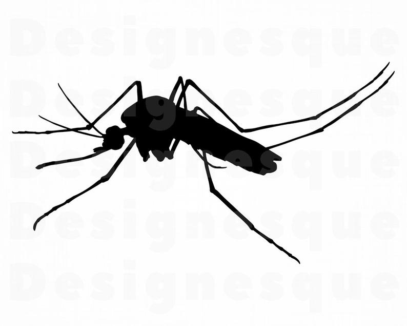 Svg files for cricut. Mosquito clipart hurt