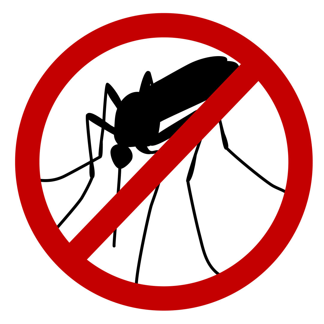 Mosquito clipart hurt. How to wage war