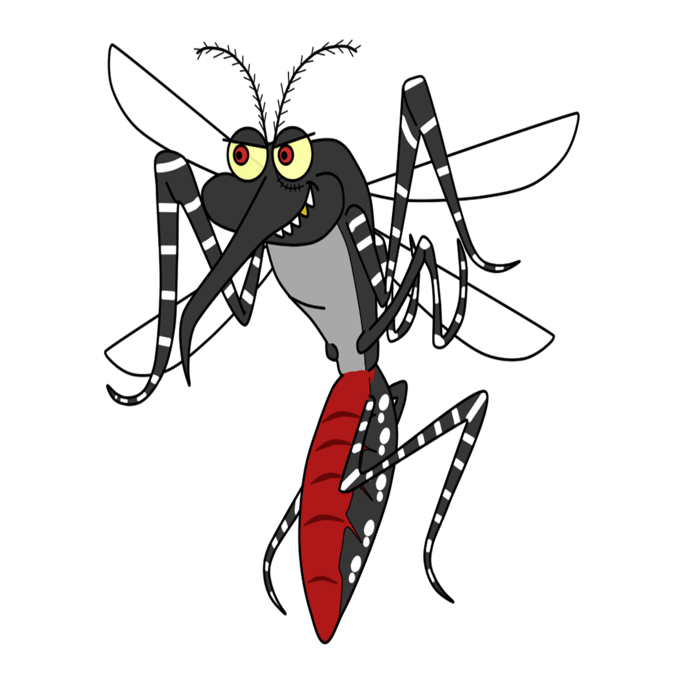 Mosquito clipart mozzie. Success our long search