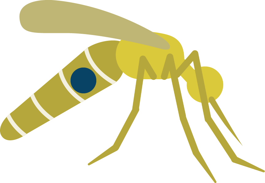 Mosquito prevention disease