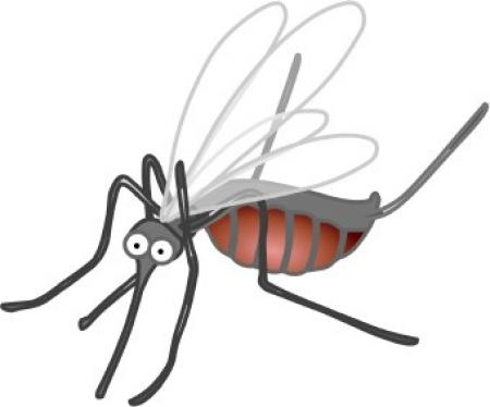 Free download on webstockreview. Mosquito clipart realistic