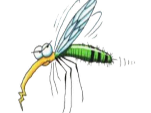 huge freebie download. Mosquito clipart realistic